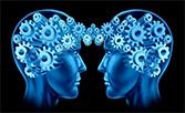 Alimentación y desarrollo cognitivo
