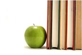 ¿Por qué es importante la educación nutricional?