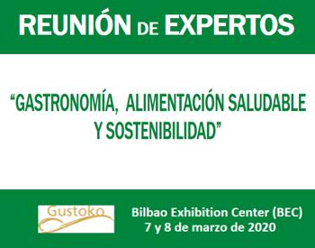 Conclusiones del Grupo de Expertos de la reunión del BEC de Bilbao. Gustoko 2020