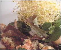 Ensalada de mollejas con cangrejos de río