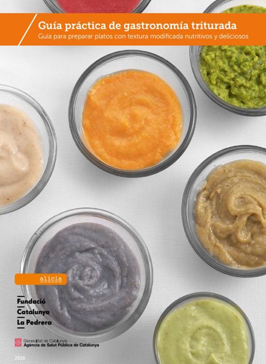 Guía práctica de gastronomía triturada